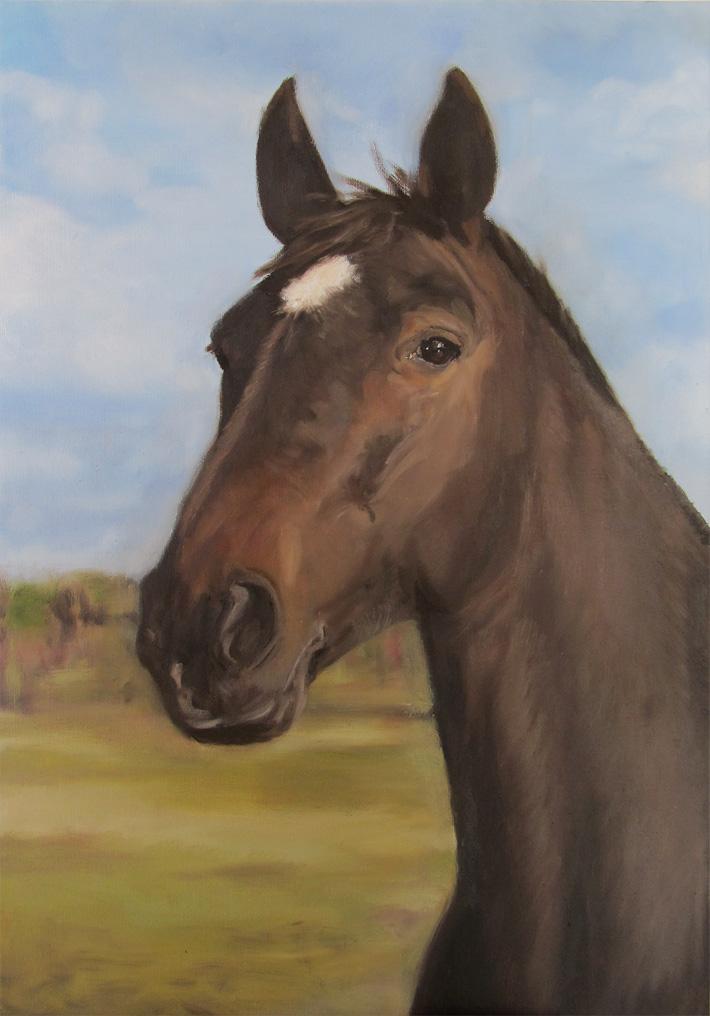 Hästporträtt av Märta