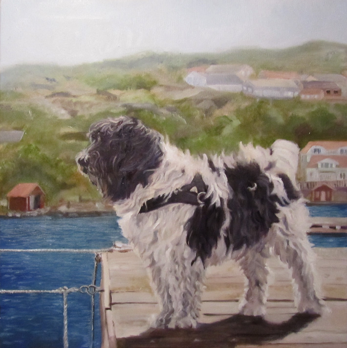 hundporträtt närbild