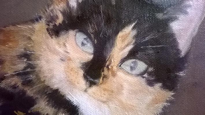 Kattporträtt av Pipen detalj